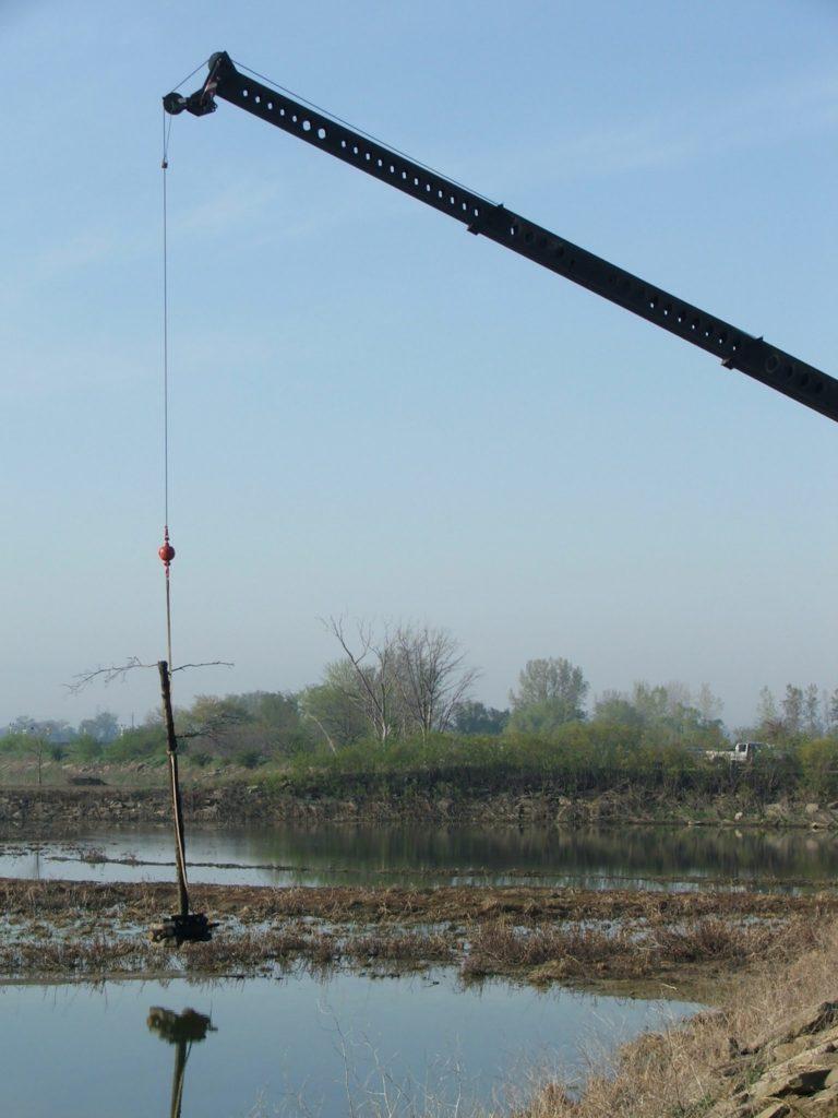Raptor pole in artificial wetland