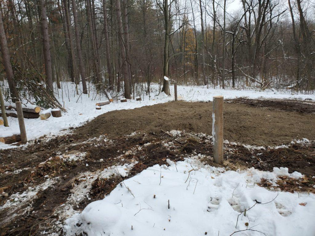 Turtle habitat mound