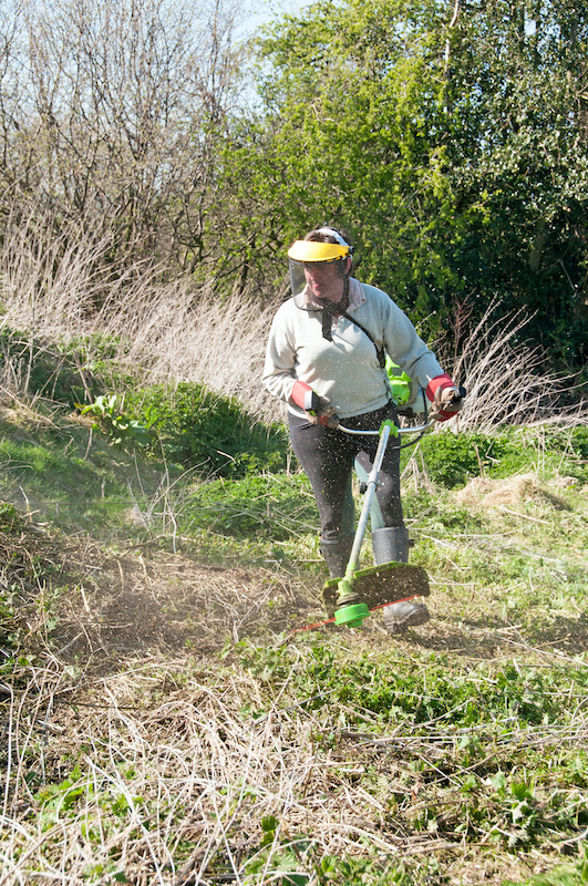 Garden strimmer being used to clear a patch of weeds