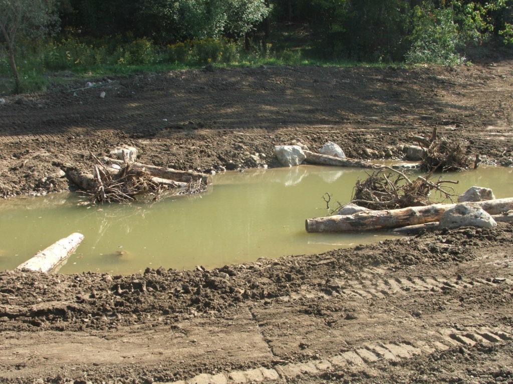 Habitat pond