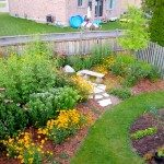 low-maintenance-native-plants-and-vegetable-garden